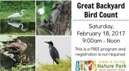 Great Backyard Bird Count, Oliver Nature Park, Mansfield, TX