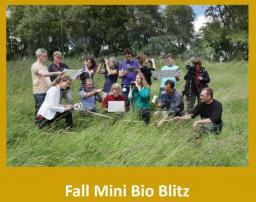 Oliver Nature park, Fall Mini Bio Blitz, Mansfield, TX