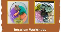 Oliver Nature Park, Terrarium Workshops, Mansfield, TX