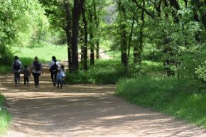 oliver nature park trail